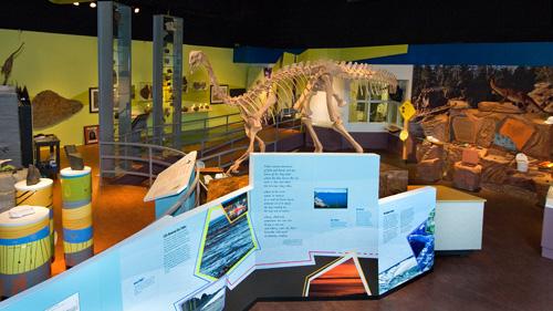 Prosauropod NEW